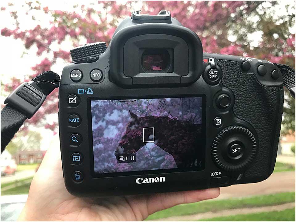 تصویر دوربین double exposure -canon